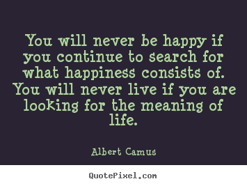 the meaning of life in the stranger by albert camus What does camus suggest about these ideas in the stranger existence is absurd and true meaning in life is impossible day to day existence is filled with anxiety and fear.